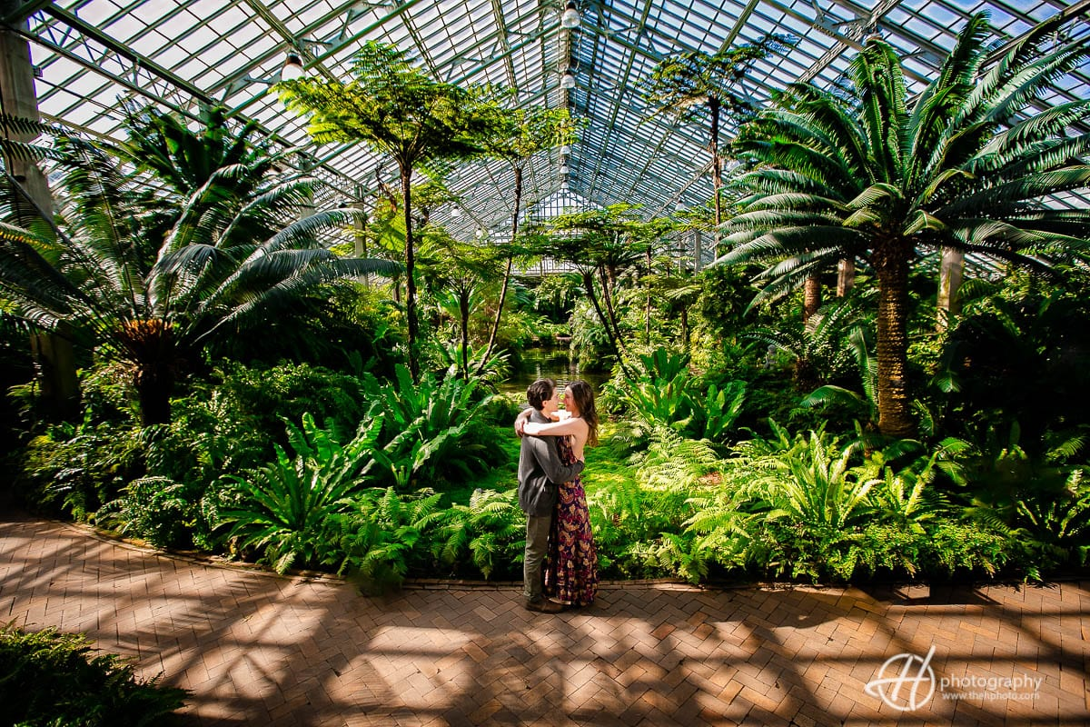 Sunny day at Garfield Park Conservatory
