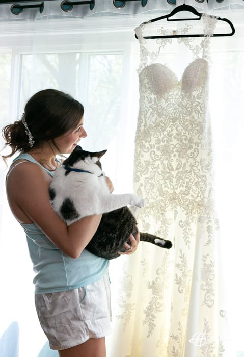 bride and cat looking at the wedding dress