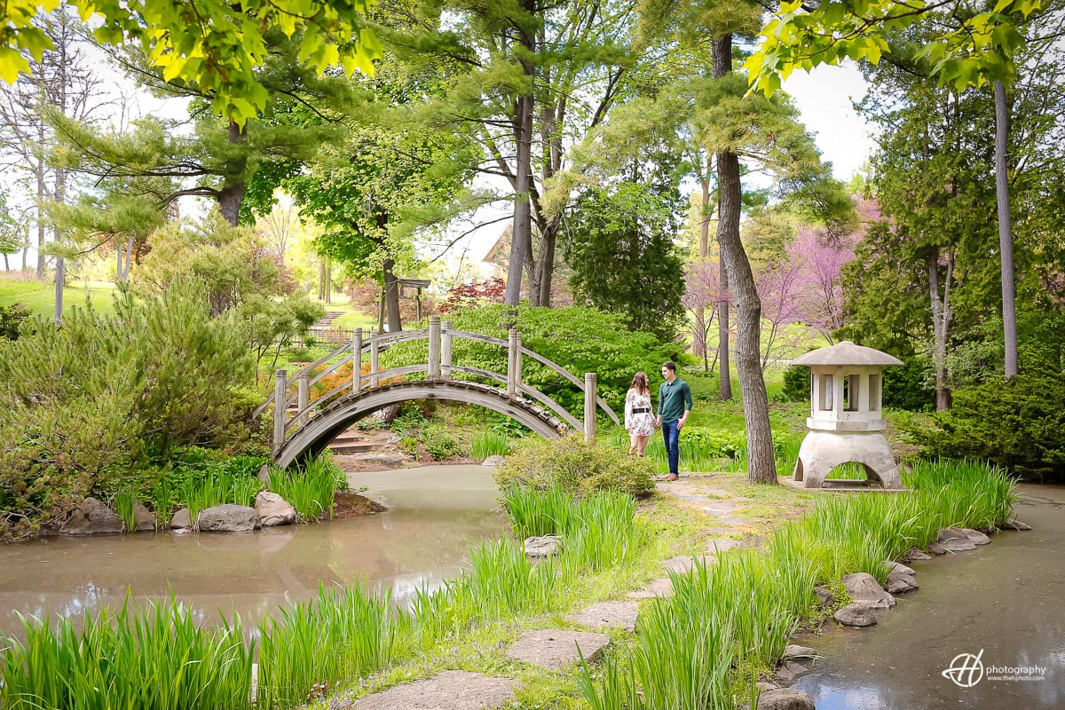 Fabyan Japanese Garden Engagement